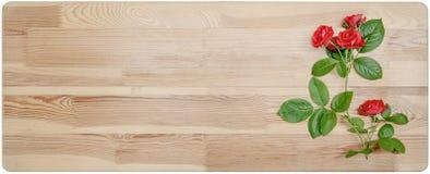 Lata tło z różami na drewnianej desce Zdjęcie Stock