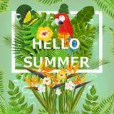 Lata tło z tropikalnymi roślinami i kwiatami Dla typographical, sztandar, plakat, partyjny zaproszenie wektor Obraz Royalty Free