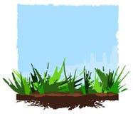 Lata tło, zielona trawa i niebieskie niebo, ilustracja wektor