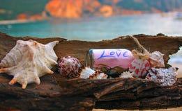 Lata tworzenie na plaży z dennymi naturalnymi istotami Zdjęcie Stock