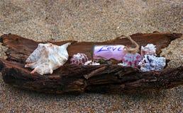 Lata tworzenie na plaży z dennymi naturalnymi istotami Zdjęcia Royalty Free