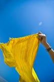 lata wiatr Obraz Royalty Free