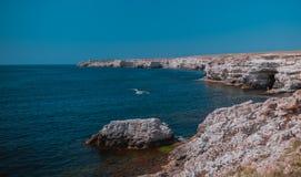 Lata widok cliffed seacoast żołnierz piechoty morskiej skały kształtują teren Obraz Royalty Free