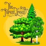 Lata Zielony Lasowy drzewo i mali zwierzęta w dzikiej naturze Zdjęcia Stock