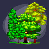 Lata Zielony Lasowy drzewo na białym tle Kreskówka wektoru ustaleni drzewa w plenerowym parku Plenerowi drzewa w Obrazy Royalty Free