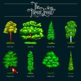 Lata Zielony Lasowy drzewo na ciemnym tle Kreskówka wektoru ustaleni drzewa w plenerowym parku Plenerowi drzewa w Fotografia Royalty Free