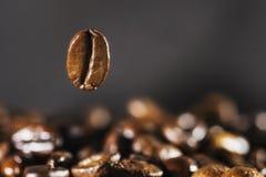 Latająca kawowa fasola nad zmrokiem zdjęcie stock