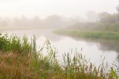 latająca mgłowa piękna pogoda rano rzeki Fotografia Stock