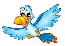 latająca papuga Obraz Stock