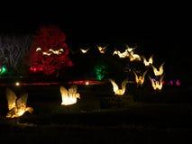 Latające dzikich kaczek lampy Zdjęcie Stock