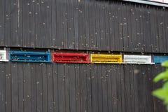 Latające pszczoły fotografia stock