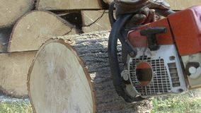 Latający drewniani golenia od rżniętej piły łańcuchowej zbiory wideo
