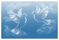 Latający gołębie w niebie Fotografia Stock
