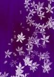 latający liście białych Obrazy Stock
