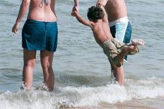 latający morza Fotografia Stock