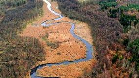 Latający nad rzeka i bagna, Polska zbiory wideo