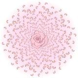 Latający od okręgu różani płatki, Sakura, wiśnie, z różą w środku Trąba powietrzna, ślubny tło Obrazy Stock