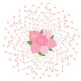 Latający od okręgu różani płatki, Sakura z bukietem róże w środku Trąba powietrzna, ślubny tło, miłość Fotografia Stock