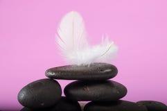 Latający piórko szarość kamień i fotografia royalty free