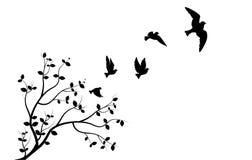 Latający ptaki na gałąź, Ścienni Decals, Trzy ptaka Trzy Projektują, para ptak sylwetka Sztuka projekt, Ścienny wystrój royalty ilustracja