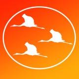 Latający Sarus żurawi logo tła ikonę Ogólną Zamierza ilustracji