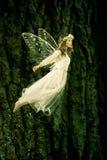 Latająca czarodziejka Zdjęcie Royalty Free