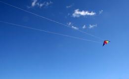 latająca kania Fotografia Stock