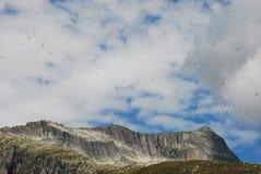 Latający Paragliders Fotografia Stock