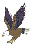 orła latanie Obraz Stock
