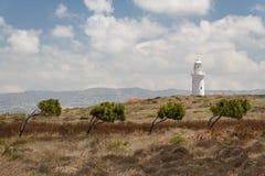 Latarni morskiej pozycja na ruinach antyczny miasto Pafos Obraz Royalty Free