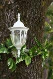 latarnia dekoracyjny Obraz Royalty Free