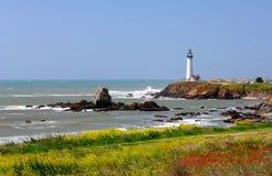 latarnia morska gołębi punkt Obraz Stock