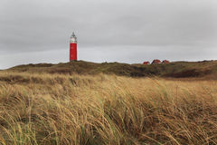 Latarnia morska na Texel wyspie, holandie Obrazy Royalty Free