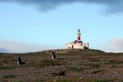 Latarnia morska na wyspie Magdalena Obraz Stock