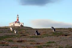 Latarnia morska na wyspie Magdalena Obraz Royalty Free