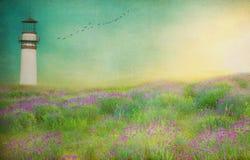 Latarnia morska textured łąka krajobraz Zdjęcia Stock