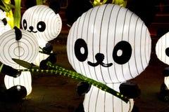 latarnia panda Obrazy Royalty Free
