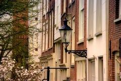 latarniowa wiosna zdjęcie stock