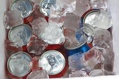 Latas da bebida no cubo de gelo Imagens de Stock Royalty Free