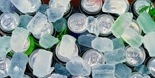 Latas da bebida no cubo de gelo Fotos de Stock