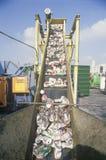Latas de aluminio que se mueven a lo largo de un transportador imagenes de archivo