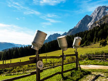 Latas de la leche en un pasto de la montaña Foto de archivo libre de regalías
