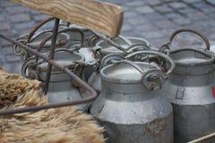 Latas do leite Imagem de Stock Royalty Free