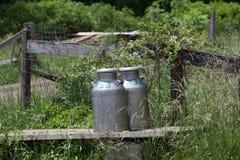 Latas do leite Fotografia de Stock