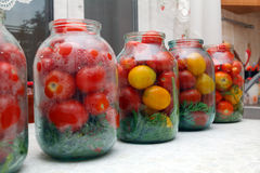 Latas, preparadas para tomates de conservação em vinagre imagem de stock royalty free