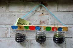 Latas recicladas usadas como um plantador foto de stock royalty free