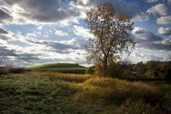 Late Afternoon Autumn Day Stock Image
