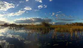 Late afternoon light in the Okavango Delta, Botswana. Late afternoon in the Okavango Delta, in one of the typical channels used by animals and mokoro boats stock photo