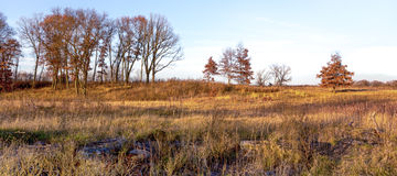 Late Afternoon on the Midwest Prairie in November Royalty Free Stock Images