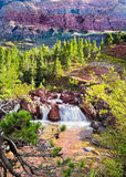 Late Afternoon on Redrock Trail. Cascading stream on Redrock Trail in east Glacier National Park, Montana royalty free stock photos